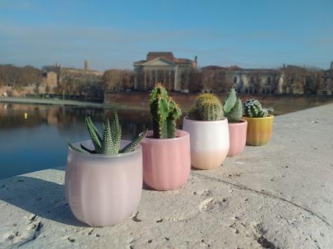 TiPii Atelier terracotta cactus pot toulouse artisanatpetite